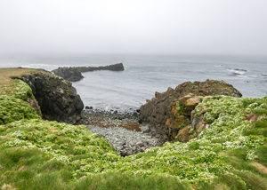 Crucero acantilados Islandia