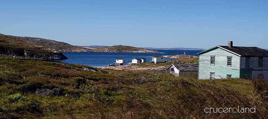Crucero por Canadá y Islandia, avistamiento de ballenas