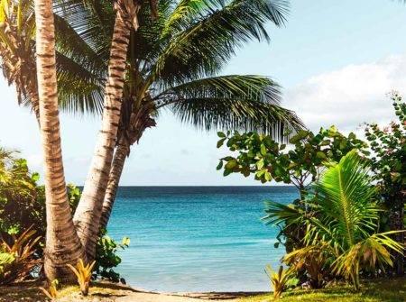 Crucero Caribe Oriental oferta Carnival Horizon