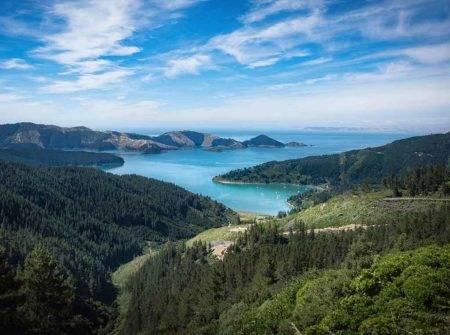 Crucero oferta por Nueva Zelanda con Royal Caribbean